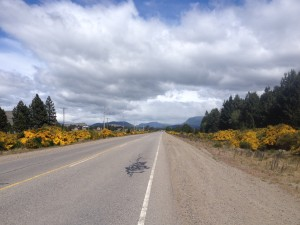 A yellow carpet welcome into Junin de Los ANdes
